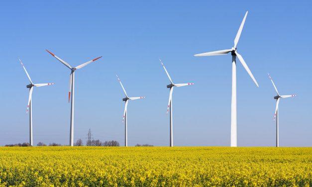 Tipos de energia sustentável: entenda como funciona cada uma