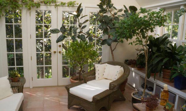 Saiba como fazer um jardim de inverno perfeito para a sua casa